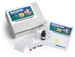 Crosscutting Concepts Ion Exchange Chromatography Kit